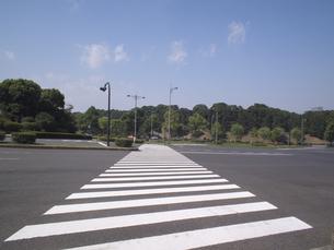 横断歩道の写真素材 [FYI00393367]