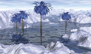 氷結のビーチの写真素材 [FYI00393371]