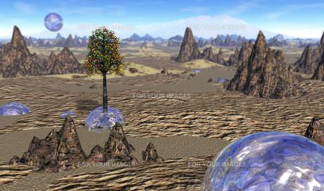 砂漠の水球の素材 [FYI00393394]