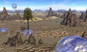 砂漠の水球の写真素材 [FYI00393394]