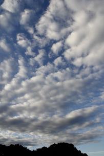 10月の雲(縦)の写真素材 [FYI00393416]