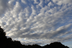 10月の雲(横)の写真素材 [FYI00393430]