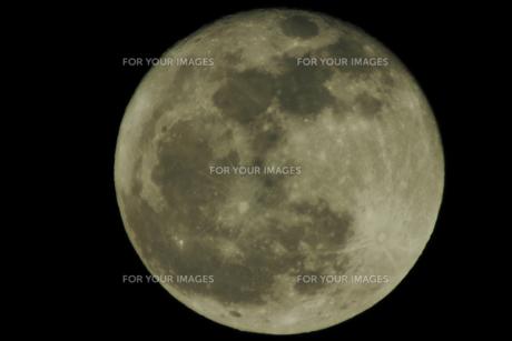 大寒の満月(黄味・1500mm)の写真素材 [FYI00394293]