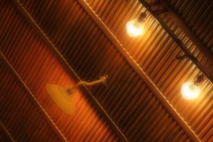 日常の1コマ「飲み屋の白熱電球」の写真素材 [FYI00394652]