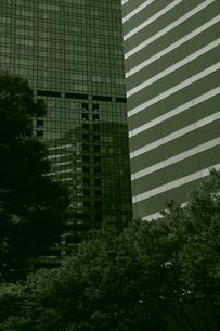 直線とフラクタルの写真素材 [FYI00395337]