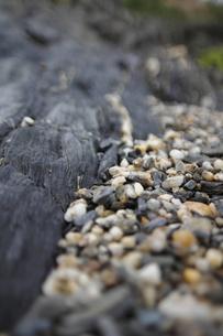 海岸の岩と荒い砂利の写真素材 [FYI00395509]