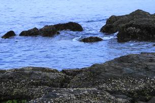 岩場に寄せる波の写真素材 [FYI00395518]