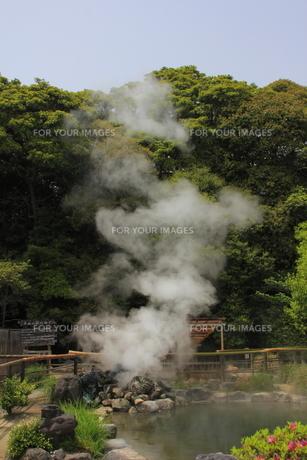 坊主地獄の噴気の写真素材 [FYI00395636]