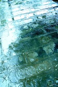 雨音に耳を澄ませての写真素材 [FYI00395956]