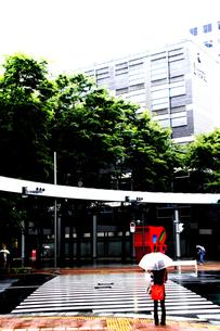 雨降りの信号待ちの写真素材 [FYI00395959]