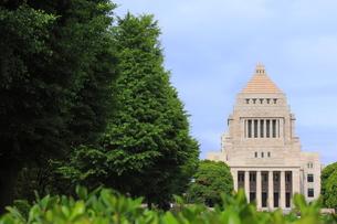 緑の中の国会議事堂(横)の写真素材 [FYI00396036]