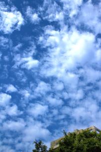 梅雨の晴れ間の写真素材 [FYI00396130]