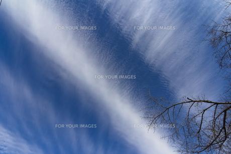 帯状の雲-1の写真素材 [FYI00396960]