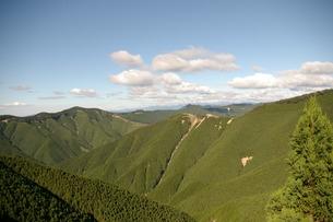 杉の山の写真素材 [FYI00397261]