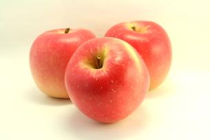りんご りんご りんご〜♪の写真素材 [FYI00397319]