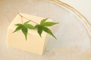 絹ごし豆腐の写真素材 [FYI00397619]