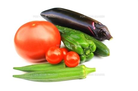 フレッシュ!夏野菜の素材 [FYI00397685]