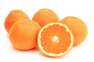 清見オレンジの写真素材 [FYI00398210]