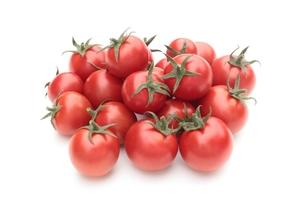 トマトの写真素材 [FYI00398846]