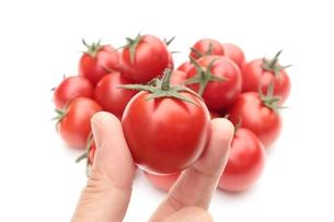 トマトの写真素材 [FYI00398855]