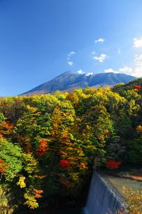 岩手山と紅葉の写真素材 [FYI00399118]