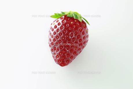 イチゴの写真素材 [FYI00399216]