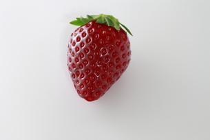 イチゴの写真素材 [FYI00399234]