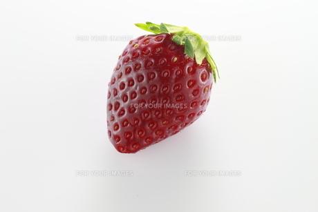 イチゴの写真素材 [FYI00399242]