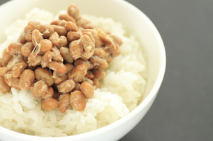 納豆ご飯の写真素材 [FYI00399681]