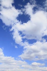 青空と白い雲の素材 [FYI00399702]
