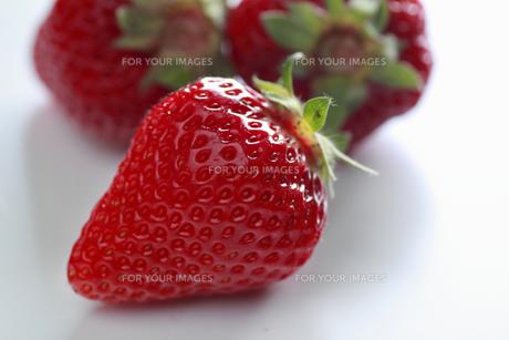 イチゴの素材 [FYI00399795]