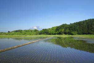 岩手山と田園風景の写真素材 [FYI00400096]