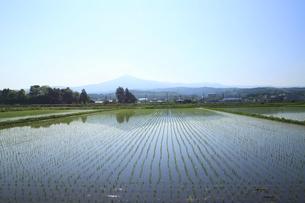 姫神山と田園風景の写真素材 [FYI00400104]