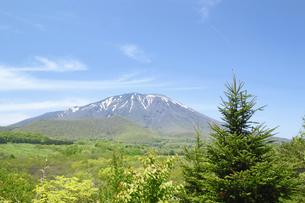 岩手山と草原の写真素材 [FYI00400109]