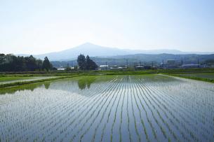 姫神山と田園風景の写真素材 [FYI00400111]