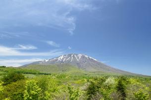 岩手山と草原の写真素材 [FYI00400112]
