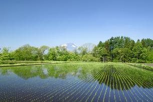 岩手山と田園風景の写真素材 [FYI00400114]