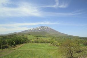 岩手山と草原の写真素材 [FYI00400117]