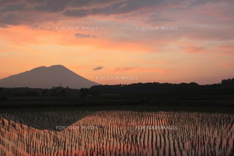 夕暮れの岩手山と田園風景の写真素材 [FYI00400258]