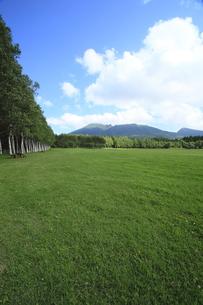 八幡平から見る岩手山の写真素材 [FYI00400269]