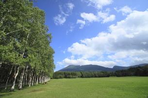 八幡平から見る岩手山の写真素材 [FYI00400279]
