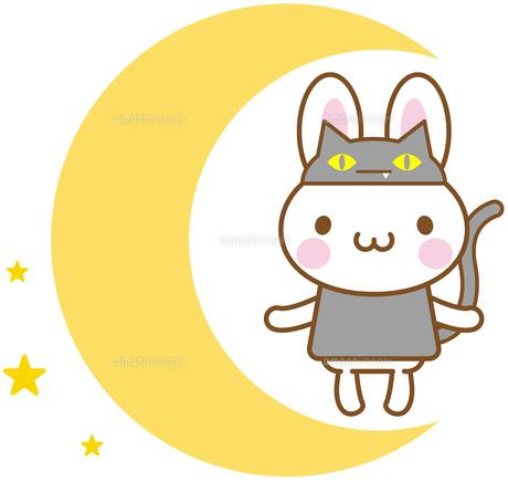 うさぎ ハロウィン 黒猫の写真素材 [FYI00400700]