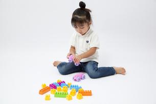 ブロックで遊ぶ女の子の写真素材 [FYI00403649]