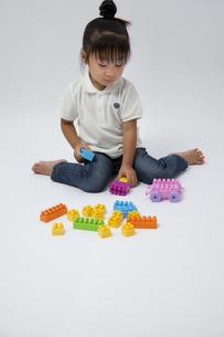 ブロックで遊ぶ女の子の写真素材 [FYI00403666]