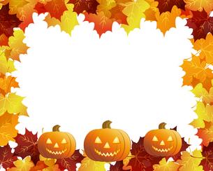 ハロウィーン かぼちゃの写真素材 [FYI00404095]