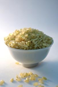 玄米の写真素材 [FYI00404310]