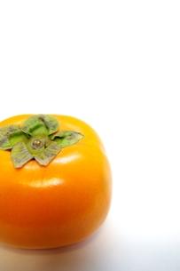 柿の写真素材 [FYI00404317]