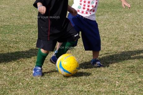 サッカーの写真素材 [FYI00404346]