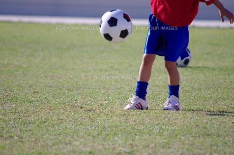 サッカーの写真素材 [FYI00404352]
