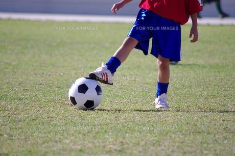 サッカーの写真素材 [FYI00404353]